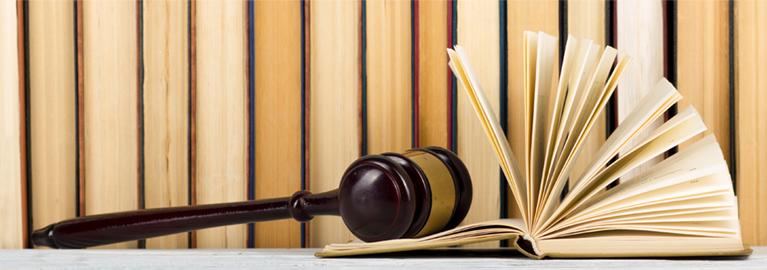 Litigation Support